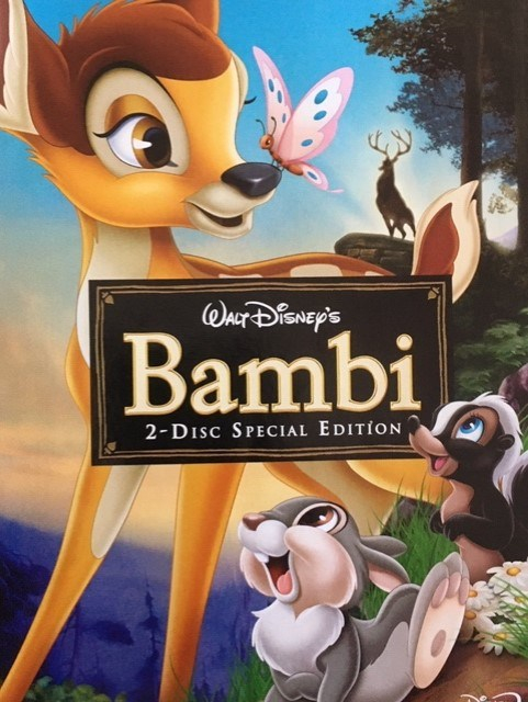 Bambi Day 5